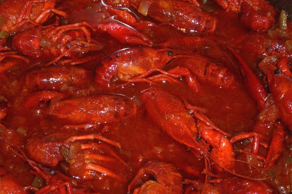 Crayfish and mining pollution: An unfortunate combination